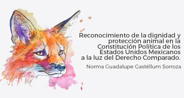 Reconocimiento de la dignidad y protección animal en la Constitución Política de los Estados Unidos Mexicanos a la luz del Derecho Comparado.